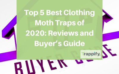 Top 5 Best Clothing Moth Traps of 2020: Reviews and Buyer's Guide