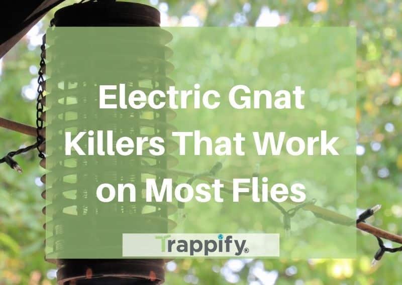 electric-gnat-killers