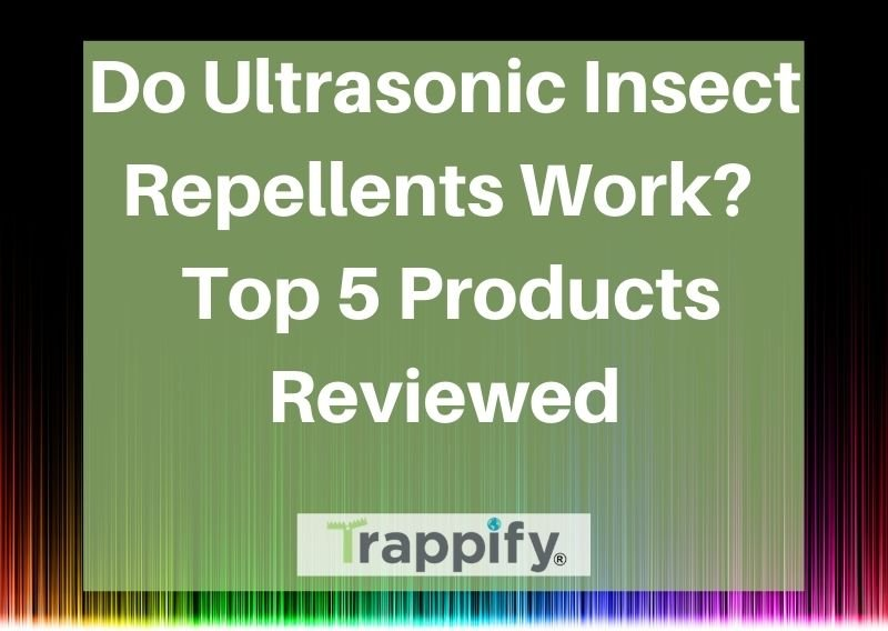 Do Ultrasonic Insect Repellents Work? Top 5 Products Reviewed