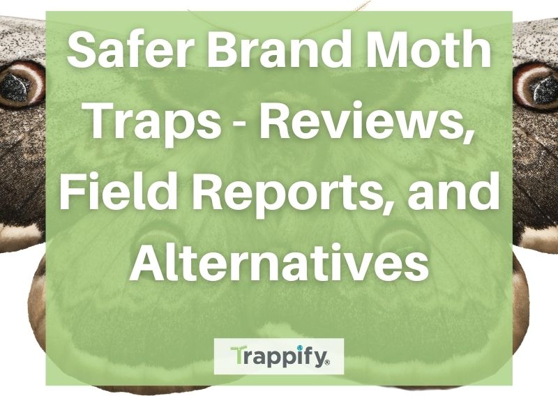 Safer Brand Moth Traps – Reviews, Field Reports, and Alternatives