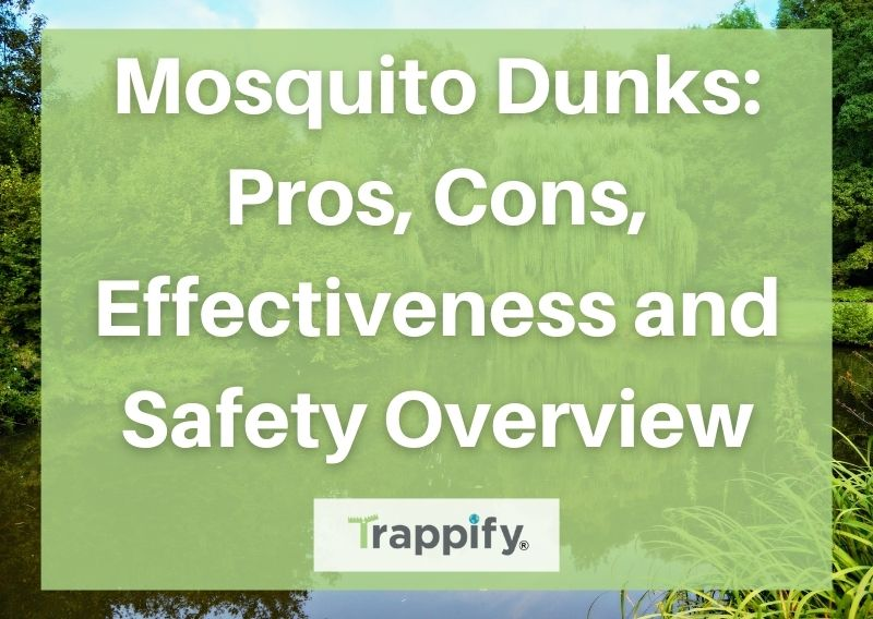 Mosquito Dunks: Pros, Cons, Effectiveness and Safety Overview