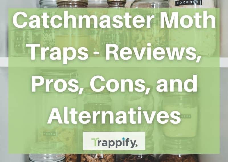 Catchmaster Moth Traps – Reviews, Pros, Cons, and Alternatives