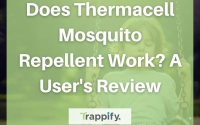 Does Thermacell Mosquito Repellent Work? A User's Review