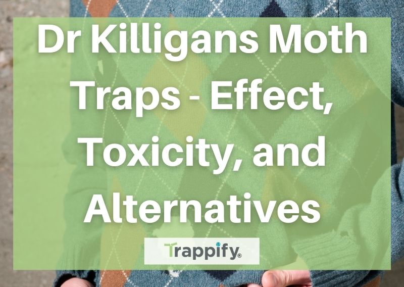 Dr Killigans Moth Traps – Effect, Toxicity, and Alternatives